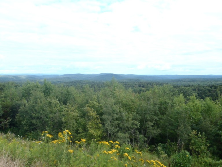 Vermont roadside